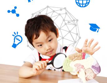 ADHD의 원인 – 뇌